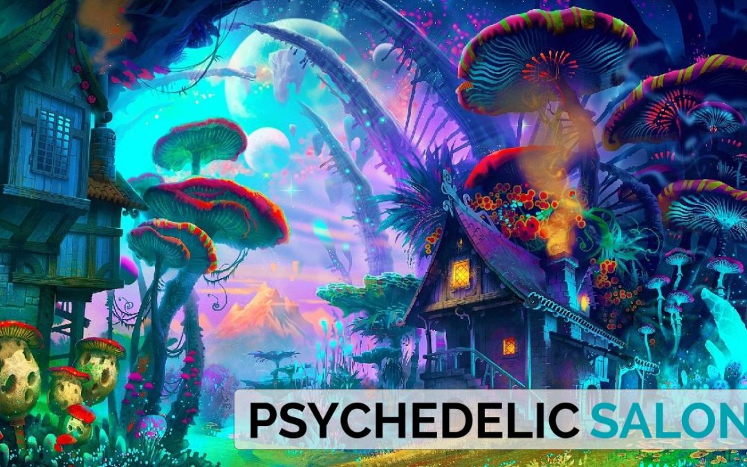 2018-04  1. Psychedelic Salon Hannover – Let's talk about psychedelics!