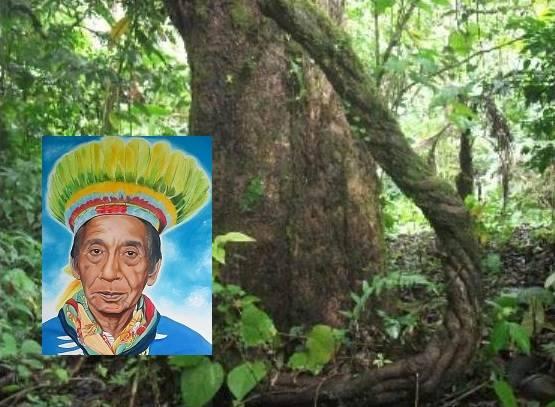 2018-06  Ayahuasca-Schamanismus und Ethik: Ein indigenes Beispiel