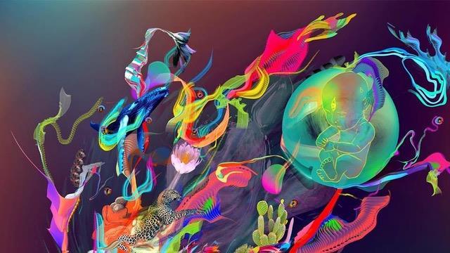 2018-11  Integration von Psychedelischen Erfahrungen
