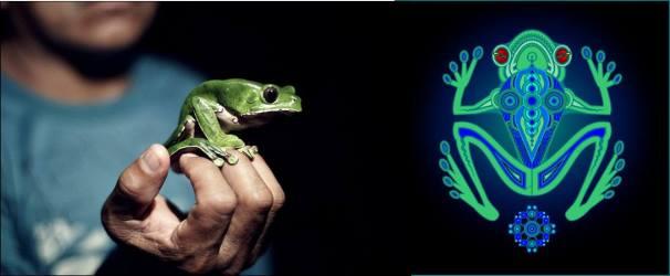 2018-04  Kambô – die schamanische Froschmedizin für Körper und Geist