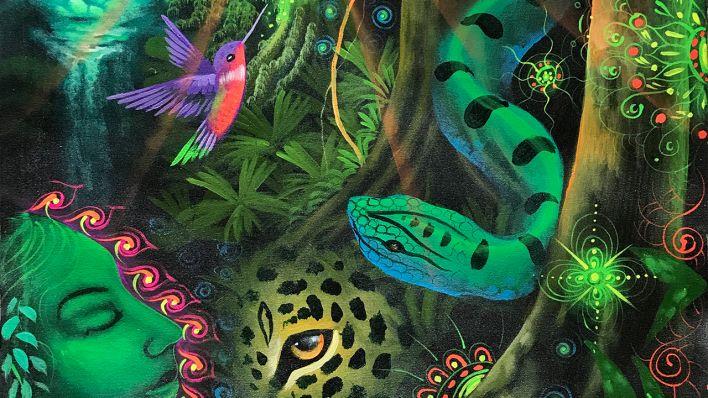 TOURIST IN MYSTISCHEN WELTEN Ayahuasca-Reisen ins Amazonasbecken Von Iris Disse